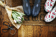 High angle view of gardening boots by tulip bouquet and scissors on hardwood floor - ASTF01095
