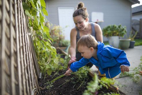 Mother with baby son in vegetable garden - AURF08140