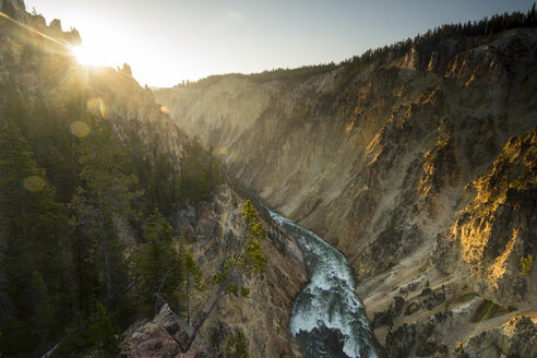 Snake River Canyon below Lower Yellowstone Falls, Yellowstone National Park, Wyoming, USA - AURF08200