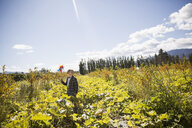 Boy with pinwheel in sunny rural field - HEROF03736