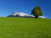 Austria, Salzkammergut, Ausseerland, Loser - WWF04610