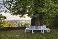Germany, Upper Bavaria, Freising, Weihenstephan, Oberdieckgarten, park bench around linden tree - SIE08279