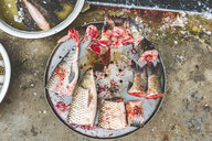 Vietnam, Hanoi, fish on sale at local market in the old town - WPEF01279