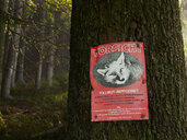 Austria, Salzkammergut, Mondsee, rabies warning sign in forest - WW04707
