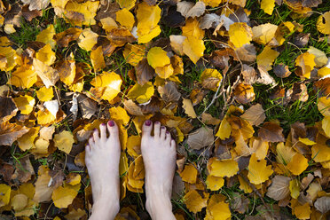 Close-up of woman's feet in autumn leaves - CHPF00531