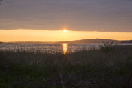 Germany, Ruegen, Baltic Sea coast at sunset - MAMF00306