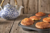 Tray with baked muffins - EPF00525