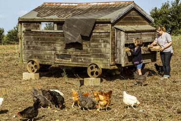 Woman and girl collecting eggs from a hen house on a farm. - MINF09829