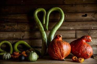 Close up of a selection of green and orange pumpkins on wooden shelf. - MINF09865