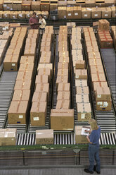 Overview of a large industrial distribution warehouse storing products in cardboard boxes on conveyor belts and racks. - MINF09955