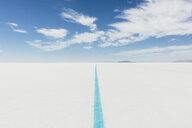 Painted blue line on Salt Flats, marking race course - MINF10003