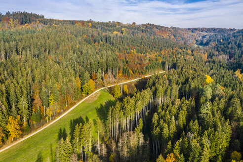 Germany, Baden-Wuerttemberg, Swabian Franconian forest, Aerial view of forest in autumn - STSF01819