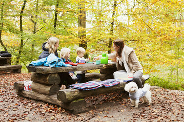 People sitting on wooden table in forest - ASTF01355