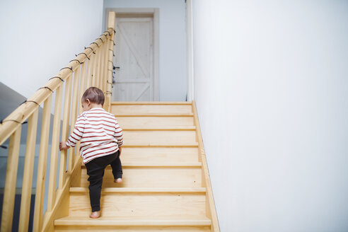 Toddler boy walking up stairs at home - HAPF02834