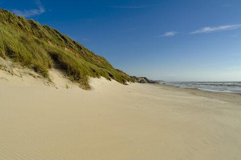 Denmark, Jutland, Lokken, dune and beach - UMF00883