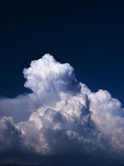 Cumulus cloud - WWF04812
