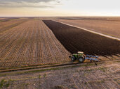 Serbia, Vojvodina. Tractor plowing field in the evening - NOF00069