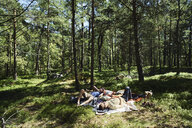 Young men lying in a forest in Djurgarden, Sweden - FOLF09949