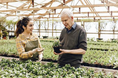 Garden centre worker talking to senior man - FOLF09958