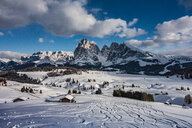 Seiser Alm, Alpe di Siusi, Dolomites - CUF46628