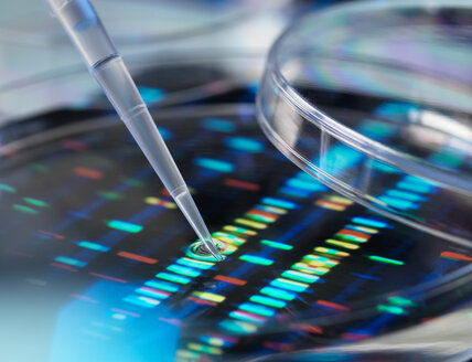 Pipette adding sample to petri dish with DNA profiles in background - CUF46703