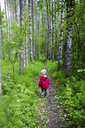 Finland, Kuopio, girl walking in a birch forest - PSIF00206