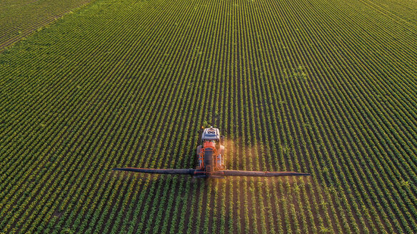 Serbia, Vojvodina, Aerial view of a tractor spraying soybean crops - NOF00073