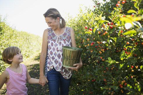 Mother and daughter picking currants in garden - HEROF04691