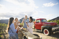 Friends wine tasting drinking red wine and enjoying charcuterie board in sunny vineyard - HEROF04859