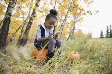 Girl texting with cell phone sitting on pumpkin in autumn park - HEROF04940