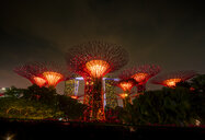 Singapore, Marina Bay, Gardens by the Bay, Super trees at night - SMAF01178