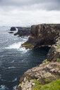 United Kingdom, Scotland, Shetland Islands, cliffs near Esha Ness - RUNF00981