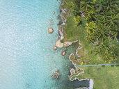 Mexiko, Yucatan, Quintana Roo, lagoon of Bacalar, palm treee at turquoise water, drone image - MMAF00769