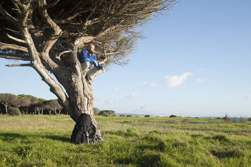 Hiker with backpack, sitting in tree - KBF00399
