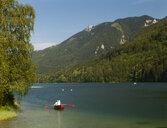Austria, Mariazell, Erlaufsee, Gemeindealpe - WWF04839
