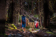 Rock climbers and dog walking through forest, Squamish, Canada - CUF46933