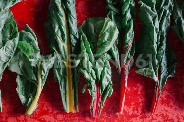 Row of vegetable leaves on red background, overhead view - CUF47572