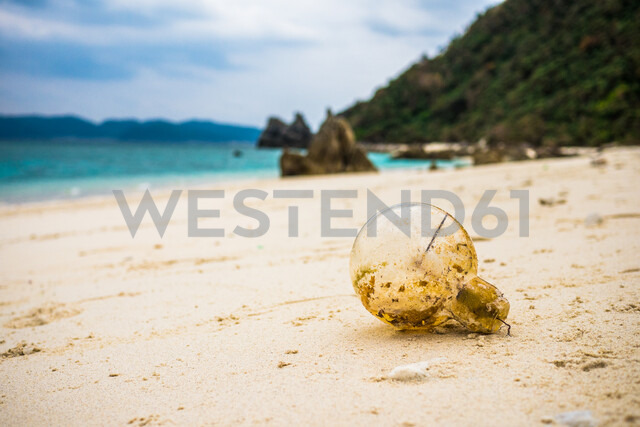 Light bulb washed up on beach at Kerama Islands, Japan - ASTF02145