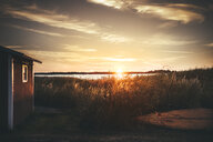Grass growing by log cabin against sky during sunset - ASTF02148