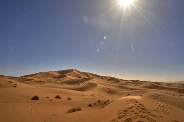Morocco, desert at backlight - EPF00547