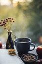 heißer Tee, Buch, Kekse, Nüsse auf herbstlicher Fensterbank - JESF00208