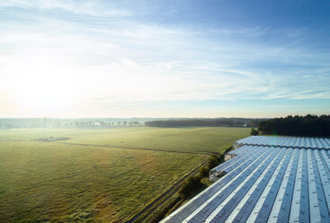 Field landscape with plant nursery greenhouse roof at sunrise, elevated view, Netherlands - CUF47940