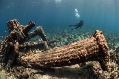 Diver exploring reef life and old wrecks, Alacranes, Campeche, Mexico - CUF48042