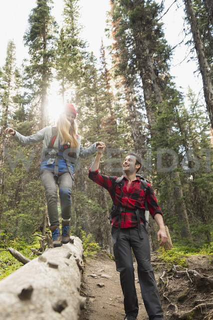 Couple hiking holding hands walking along fallen tree in sunny woods - HEROF05392 - Hero Images/Westend61