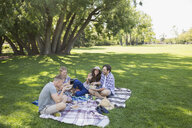 Couples eating on picnic blanket in grass in summer park - HEROF05425