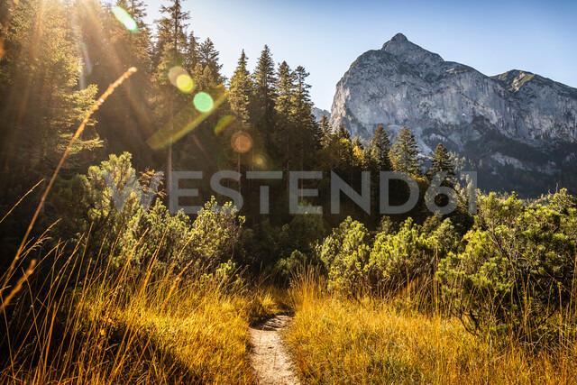 Hiking trail, Karwendel region, Hinterriss, Tirol, Austria - CUF48308 - Manuel Sulzer/Westend61