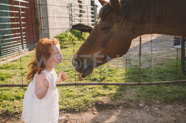 Little girl kissing horse on nose in farm - ISF20143 - Jenn Austin-Driver (Photography)/Westend61