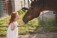 Little girl kissing horse on nose in farm - ISF20143