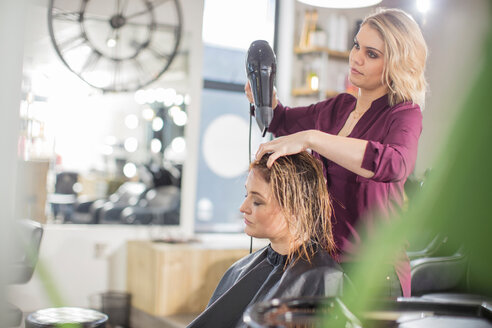 Hairdresser blow drying customer's hair in salon - ISF20155