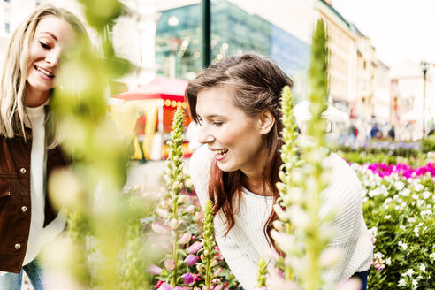 Smiling female friends looking at plants in market - ASTF02347